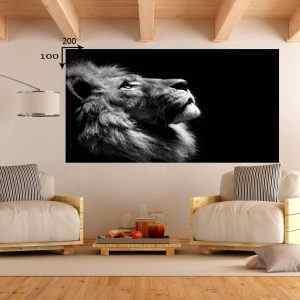 אריה שחור לבן