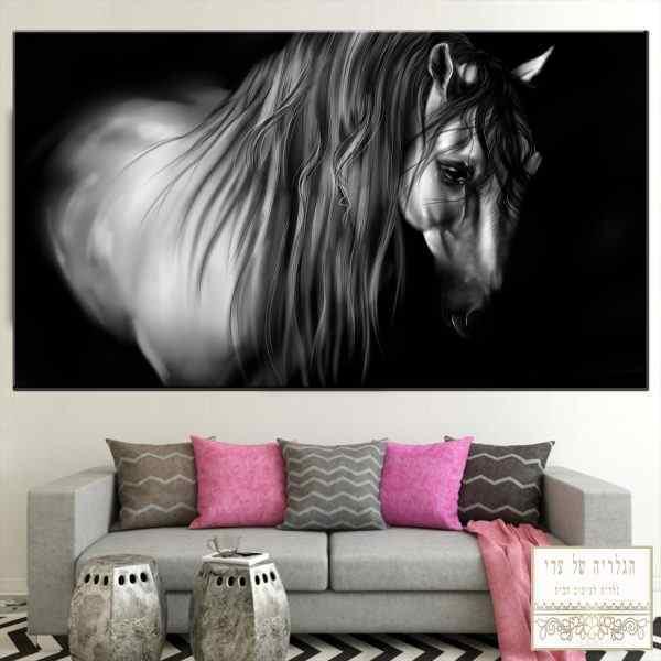 תמונה של סוס שחור לבן אומנותי