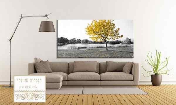 תמונה של נוף עץ צהוב רקע לבן שלכת