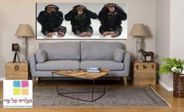 תמונה של שלושת הקופים לא רואה לא שומע ולא מדבר